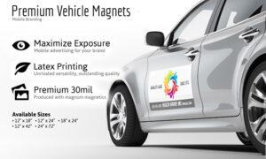 Magnet Printing